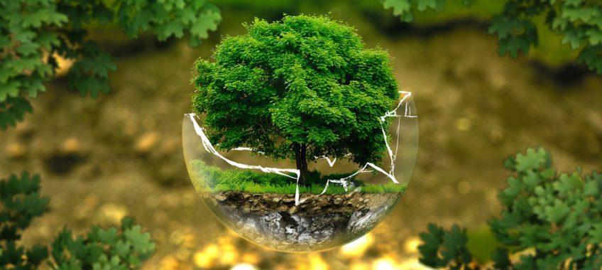 Encre biodégradable : relevons ensemble le défi
