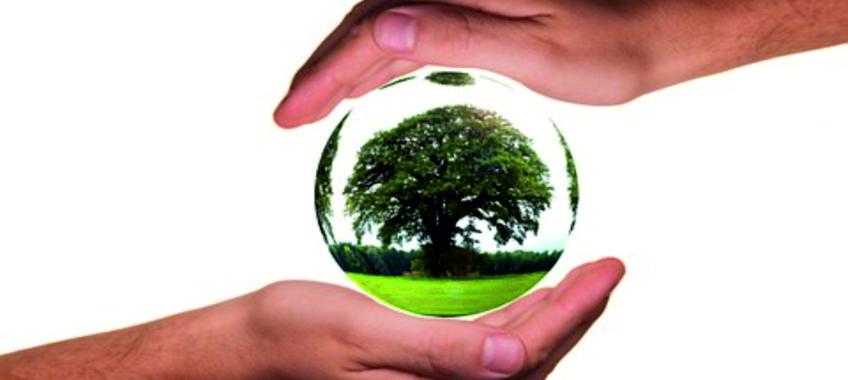 4 conseils pour réduire votre empreinte écologique